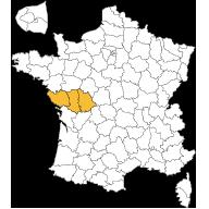 maisons-du-marais-agence