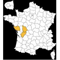 villas-et-demeures-de-france-agence